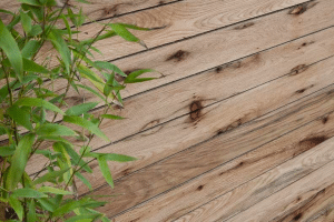 Dorset Oak Fence Panels